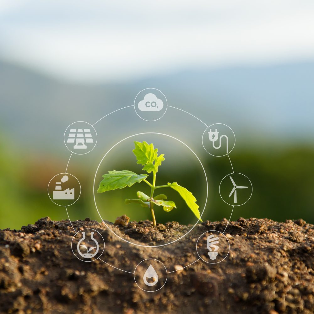 Building sustainability - Solution of Air and Environment pollution concept.
